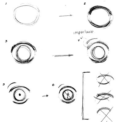 proceso-ojo